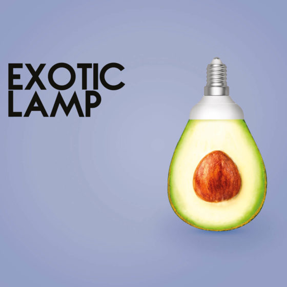 avocado-lamp